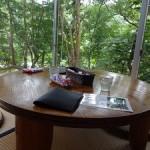 沖縄子連れ旅行でもゆっくりランチできるおすすめカフェ